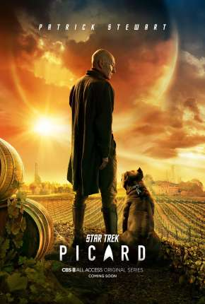 Star Trek - Picard - Legendada